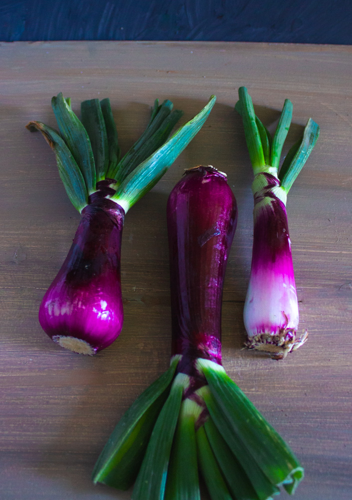 Lovely purple spring onions