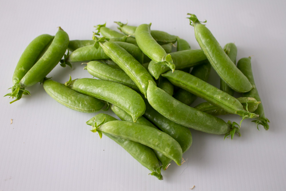 Pile of snap peas on white background