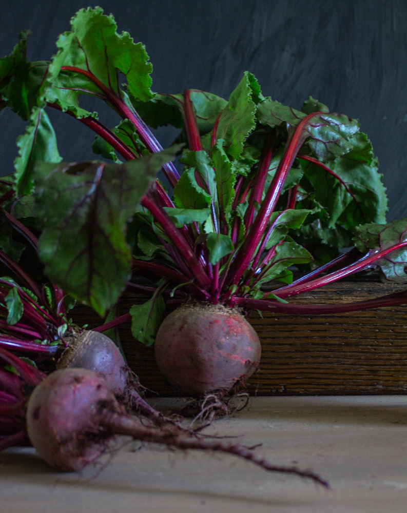 Beets on a dark background