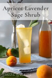 Apricot shrub mixed with soda water in tall glass
