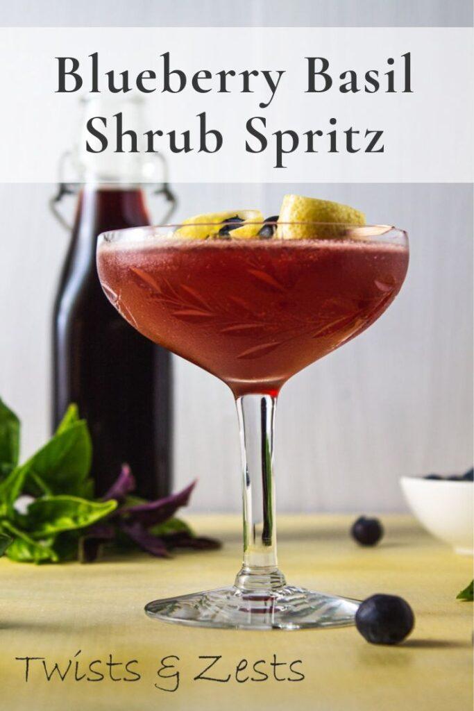 Side shot of blueberry shrub spritz