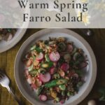 Overhead shot of farro salad with writing