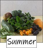 Summer fruit and vegetables link